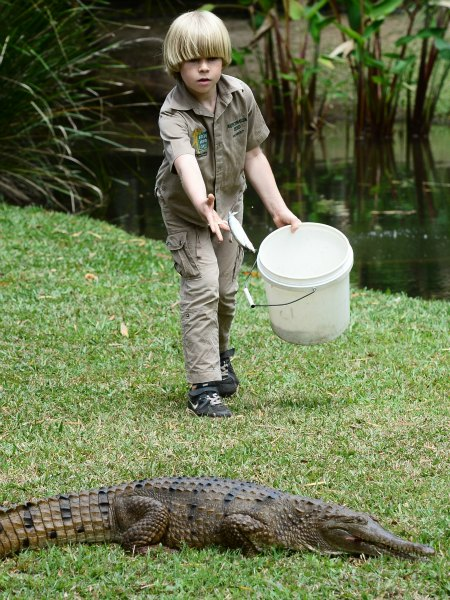 Steve Irwin S Son Robert Proves He S A Chip Off The Block With First Public Croc Feeding Demonstration Tnt Magazine