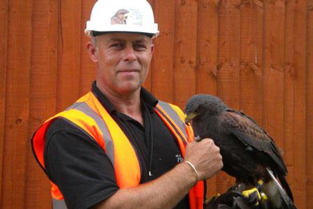 Jason Keddie Olympic Park Falconer