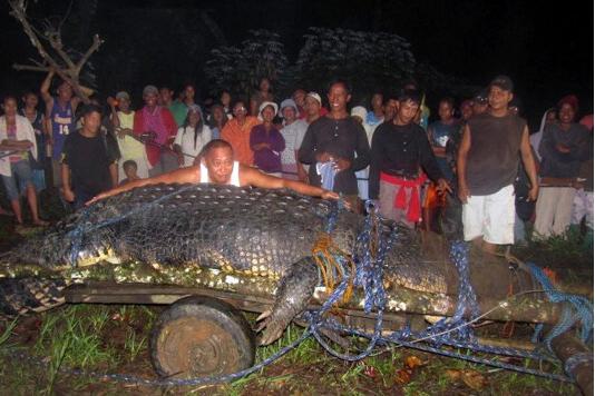 French Sailor Survives Nhulunbuy Croc Attack After Boffing