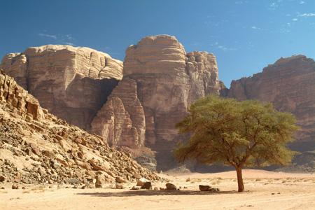 Travel Adventure Follow Lawrence Of Arabia S Sandy Trail